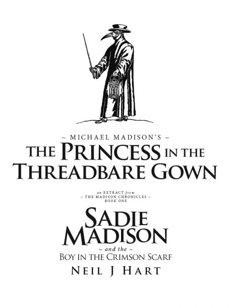 ThePrincessInTheThreadbareGown