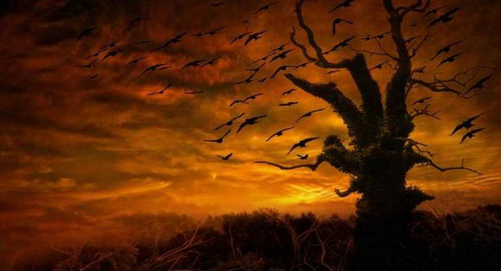 writing-witchtree-image